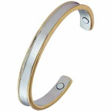 Stainless Steel Bangle with Magnets and Gold PVD Lining