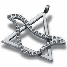 Gorgeous Stainless Steel Star of David with Jeweled Dove - Judaica and Kabbalah