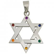 Stainless Steel Star of David Pride Pendant