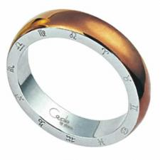 Stainless Steel Ring w/PVD Gold